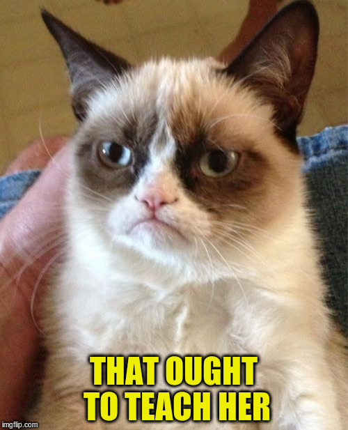 Grumpy Cat Meme | THAT OUGHT TO TEACH HER | image tagged in memes,grumpy cat | made w/ Imgflip meme maker