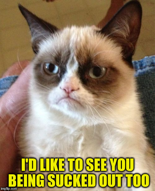 Grumpy Cat Meme | I'D LIKE TO SEE YOU BEING SUCKED OUT TOO | image tagged in memes,grumpy cat | made w/ Imgflip meme maker