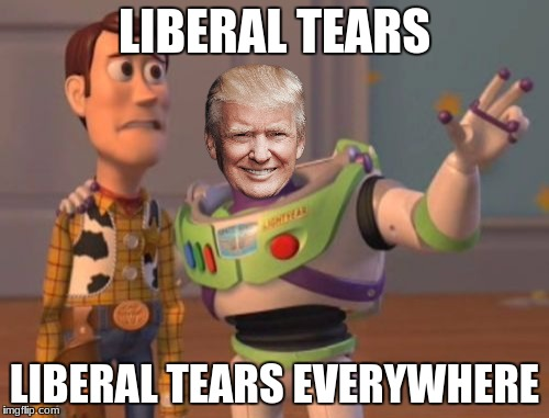 trump rt'ing these trump pics is making libs cry | LIBERAL TEARS LIBERAL TEARS EVERYWHERE | image tagged in memes,x,x everywhere,x x everywhere | made w/ Imgflip meme maker