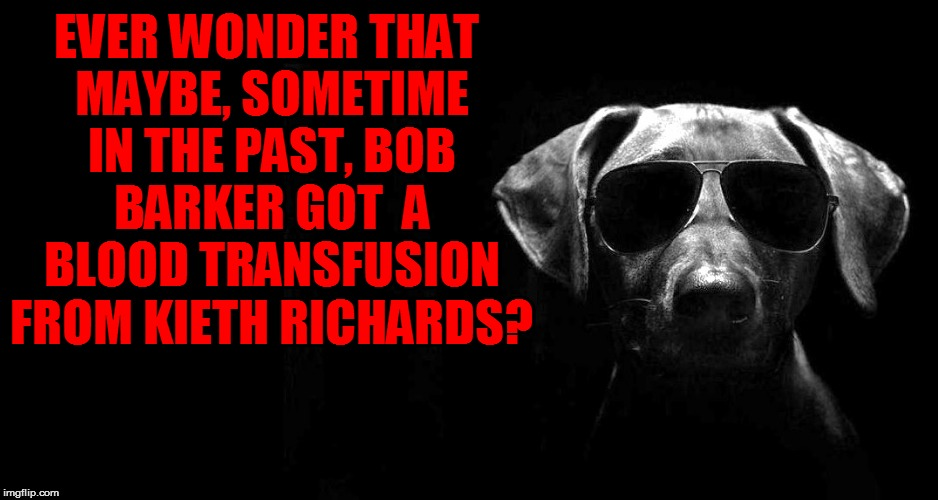 EVER WONDER THAT MAYBE, SOMETIME IN THE PAST, BOB BARKER GOT  A BLOOD TRANSFUSION FROM KIETH RICHARDS? | made w/ Imgflip meme maker
