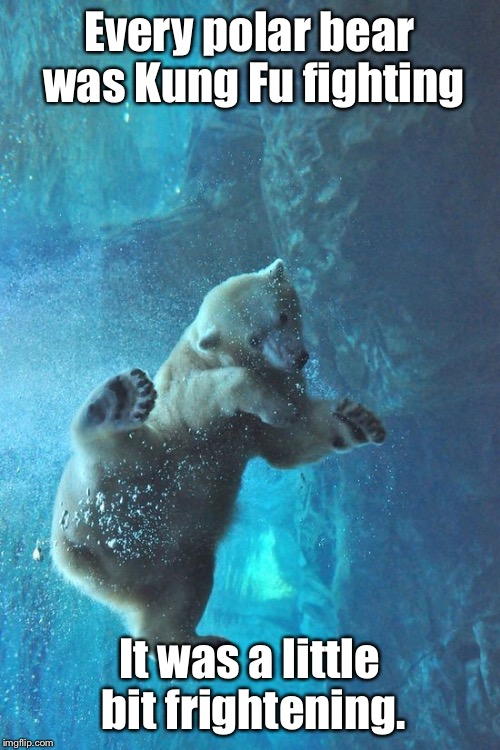Underwater marshal arts! | Every polar bear was Kung Fu fighting It was a little bit frightening. | image tagged in memes,polar bear,everybody is kung fu fighting,underwater | made w/ Imgflip meme maker