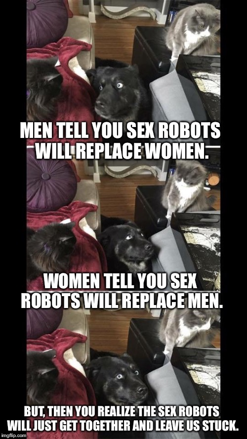 Sex Robots | MEN TELL YOU SEX ROBOTS WILL REPLACE WOMEN. WOMEN TELL YOU SEX ROBOTS WILL REPLACE MEN. BUT, THEN YOU REALIZE THE SEX ROBOTS WILL JUST GET T | image tagged in conflicted dog,dog,cats,sex,robots,funny | made w/ Imgflip meme maker