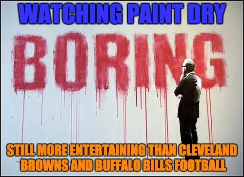 NFL Boredom | WATCHING PAINT DRY STILL MORE ENTERTAINING THAN CLEVELAND BROWNS AND BUFFALO BILLS FOOTBALL | image tagged in cleveland browns,buffalo bills,nfl,suck,losers,fml | made w/ Imgflip meme maker