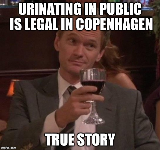 true story | URINATING IN PUBLIC IS LEGAL IN COPENHAGEN TRUE STORY | image tagged in true story | made w/ Imgflip meme maker
