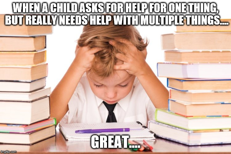 WHEN A CHILD ASKS FOR HELP FOR ONE THING, BUT REALLY NEEDS HELP WITH MULTIPLE THINGS.... GREAT.... | image tagged in lifespan | made w/ Imgflip meme maker