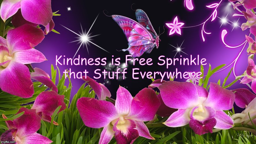 Kindness | Kindness is Free Sprinkle that Stuff Everywhere | image tagged in kindness,flowers,beauty,peace | made w/ Imgflip meme maker