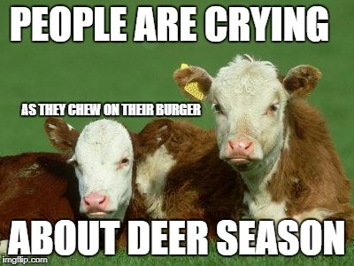 PEOPLE ARE CRYING ABOUT DEER SEASON AS THEY CHEW ON THEIR BURGER | image tagged in baby cows | made w/ Imgflip meme maker
