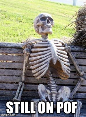 Waiting Skeleton Meme | STILL ON POF | image tagged in memes,waiting skeleton | made w/ Imgflip meme maker