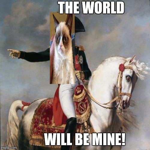 AMBITION :D | THE WORLD WILL BE MINE! | image tagged in funny,cats,animals,humor,history,memes | made w/ Imgflip meme maker
