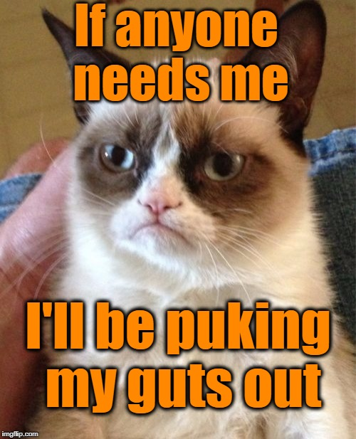 Grumpy Cat Meme | If anyone needs me I'll be puking my guts out | image tagged in memes,grumpy cat | made w/ Imgflip meme maker