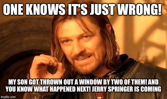 One Does Not Simply Meme | ONE KNOWS IT'S JUST WRONG! MY SON GOT THROWN OUT A WINDOW BY TWO OF THEM! AND YOU KNOW WHAT HAPPENED NEXT! JERRY SPRINGER IS COMING | image tagged in memes,one does not simply | made w/ Imgflip meme maker