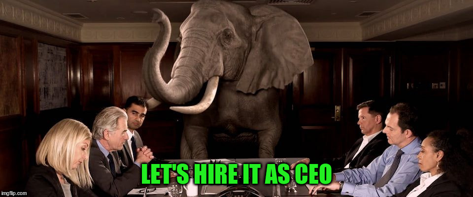 LET'S HIRE IT AS CEO | made w/ Imgflip meme maker