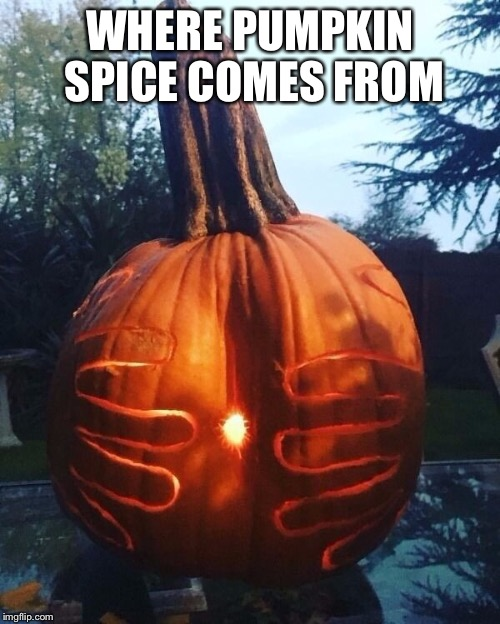 WHERE PUMPKIN SPICE COMES FROM | image tagged in pumpkin spice,fall,halloween | made w/ Imgflip meme maker