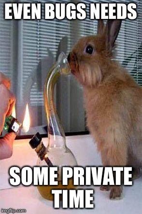 Smoke it | EVEN BUGS NEEDS SOME PRIVATE TIME | image tagged in stoner bunny,bugs bunny,weed,bong,cannabis | made w/ Imgflip meme maker