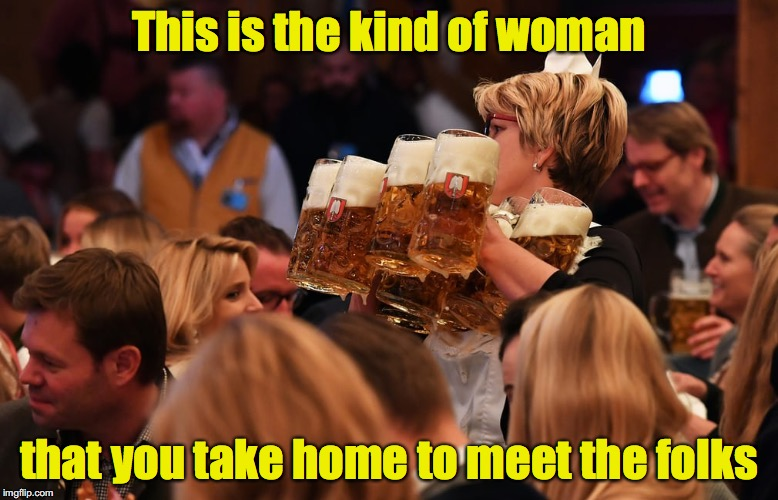 And I bet she can plow the back 40, too | This is the kind of woman that you take home to meet the folks | image tagged in beer maid | made w/ Imgflip meme maker