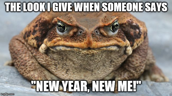 "l | THE LOOK I GIVE WHEN SOMEONE SAYS ""NEW YEAR, NEW ME!"" 