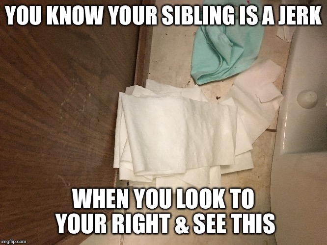 >:( | YOU KNOW YOUR SIBLING IS A JERK WHEN YOU LOOK TO YOUR RIGHT & SEE THIS | image tagged in siblings,true story,toilet paper,unrolled,funny,relatable | made w/ Imgflip meme maker