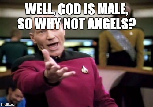 Picard Wtf Meme | WELL, GOD IS MALE, SO WHY NOT ANGELS? | image tagged in memes,picard wtf | made w/ Imgflip meme maker