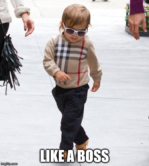 Swagalicious | LIKE A BOSS | image tagged in swagalicious,sir swag,swagger,one does not simply have this much swagger,cat walking like a boss,boss baby | made w/ Imgflip meme maker