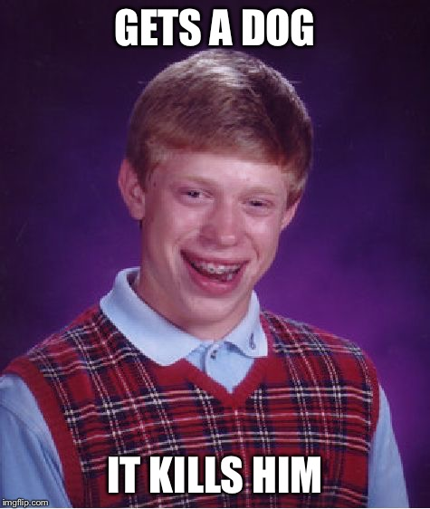 Bad Luck Brian Meme | GETS A DOG IT KILLS HIM | image tagged in memes,bad luck brian | made w/ Imgflip meme maker