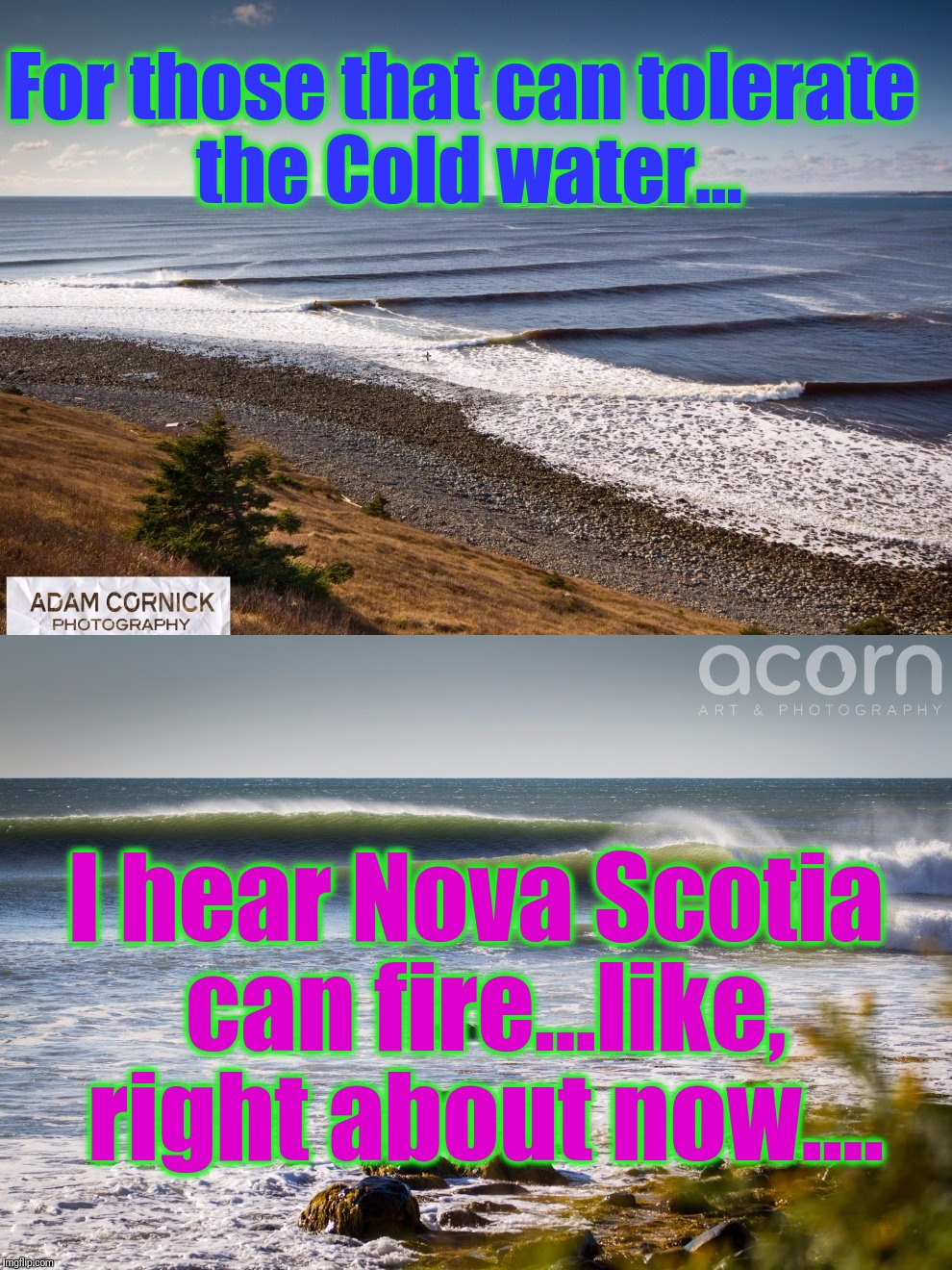 For those that can tolerate the Cold water... I hear Nova Scotia can fire...like, right about now.... | made w/ Imgflip meme maker