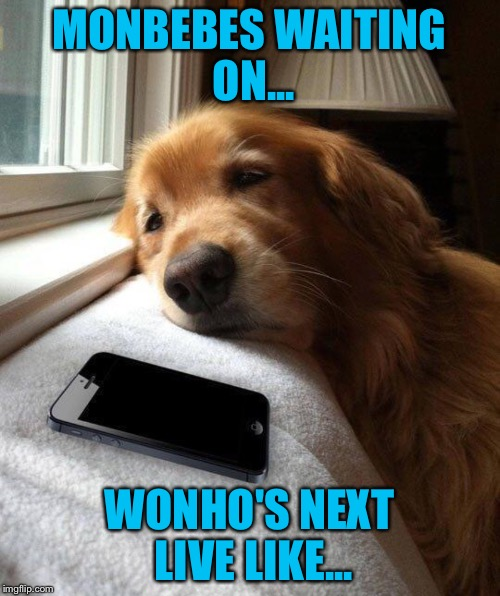 Monbebes | MONBEBES WAITING ON... WONHO'S NEXT LIVE LIKE... | image tagged in funny memes,memes | made w/ Imgflip meme maker