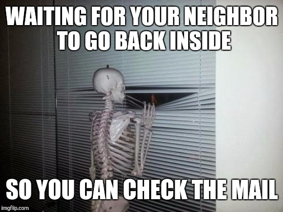 WAITING FOR YOUR NEIGHBOR TO GO BACK INSIDE SO YOU CAN CHECK THE MAIL | made w/ Imgflip meme maker