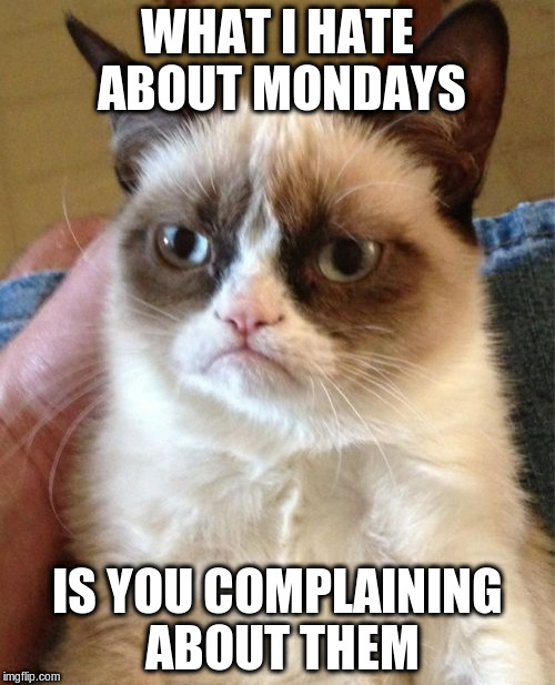 Grumpy Cat Meme | WHAT I HATE ABOUT MONDAYS IS YOU COMPLAINING ABOUT THEM | image tagged in memes,grumpy cat | made w/ Imgflip meme maker