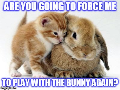 ARE YOU GOING TO FORCE ME TO PLAY WITH THE BUNNY AGAIN? | made w/ Imgflip meme maker