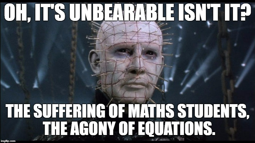 OH, IT'S UNBEARABLE ISN'T IT? THE SUFFERING OF MATHS STUDENTS, THE AGONY OF EQUATIONS. | image tagged in hellraiser | made w/ Imgflip meme maker