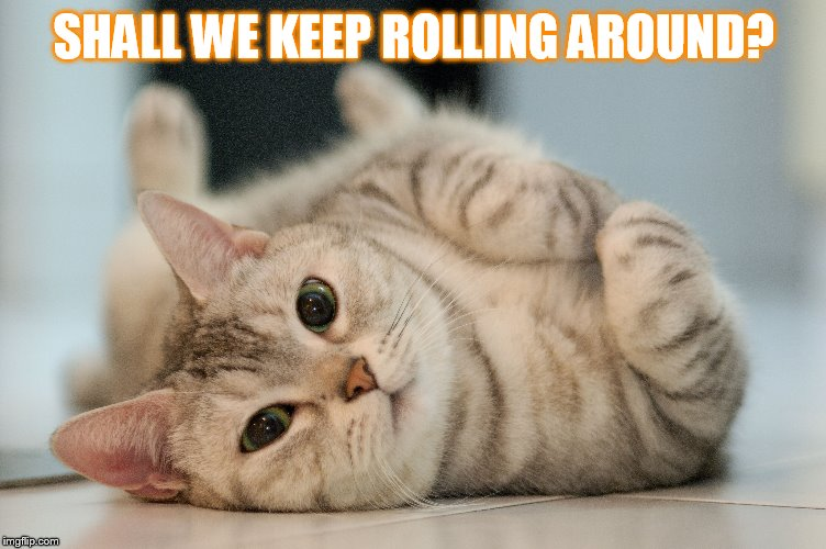 SHALL WE KEEP ROLLING AROUND? | made w/ Imgflip meme maker