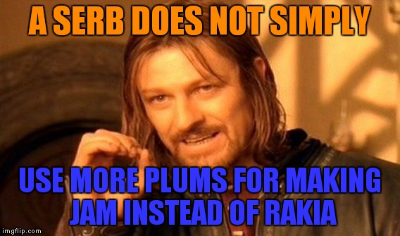 As a Serb from Bosnia and Herzegovina,I agree fully! | A SERB DOES NOT SIMPLY USE MORE PLUMS FOR MAKING JAM INSTEAD OF RAKIA | image tagged in memes,one does not simply,serbia,bosnia,slav,alcohol | made w/ Imgflip meme maker