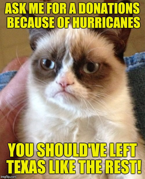 Grumpy Cat Meme | ASK ME FOR A DONATIONS BECAUSE OF HURRICANES YOU SHOULD'VE LEFT TEXAS LIKE THE REST! | image tagged in memes,grumpy cat | made w/ Imgflip meme maker