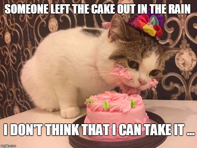 cat cake | SOMEONE LEFT THE CAKE OUT IN THE RAIN I DON'T THINK THAT I CAN TAKE IT ... | image tagged in cat cake,cats are awesome,mc aurthurs park,cake | made w/ Imgflip meme maker