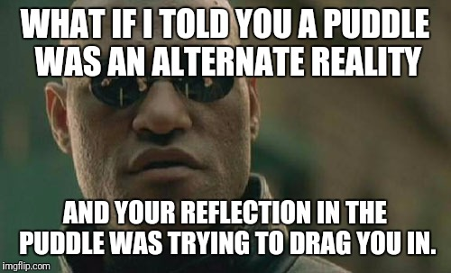 Probably not meta | WHAT IF I TOLD YOU A PUDDLE WAS AN ALTERNATE REALITY AND YOUR REFLECTION IN THE PUDDLE WAS TRYING TO DRAG YOU IN. | image tagged in memes,matrix morpheus | made w/ Imgflip meme maker