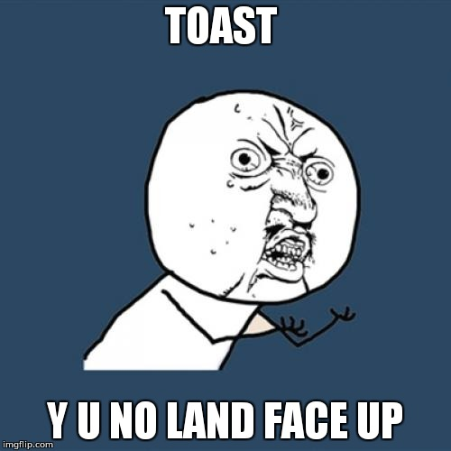 Y U No Meme | TOAST Y U NO LAND FACE UP | image tagged in memes,y u no | made w/ Imgflip meme maker