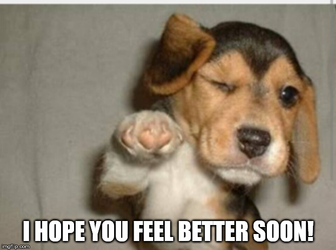 I HOPE YOU FEEL BETTER SOON! | image tagged in feel better | made w/ Imgflip meme maker