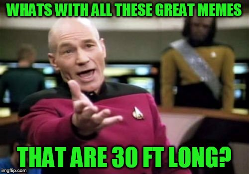Picard Wtf Meme | WHATS WITH ALL THESE GREAT MEMES THAT ARE 30 FT LONG? | image tagged in memes,picard wtf | made w/ Imgflip meme maker