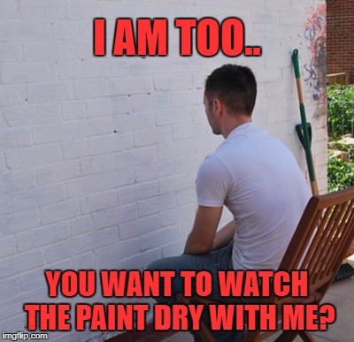 I AM TOO.. YOU WANT TO WATCH THE PAINT DRY WITH ME? | made w/ Imgflip meme maker
