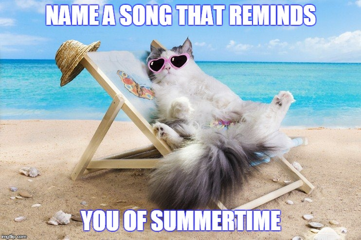 NAME A SONG THAT REMINDS YOU OF SUMMERTIME | image tagged in summer time | made w/ Imgflip meme maker