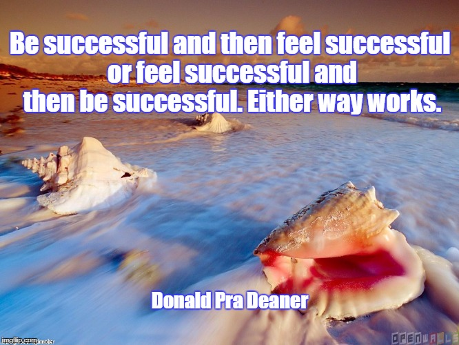 Ocean shells let go | Be successful and then feel successful or feel successful and then be successful. Either way works. Donald Pra Deaner | image tagged in ocean shells let go | made w/ Imgflip meme maker