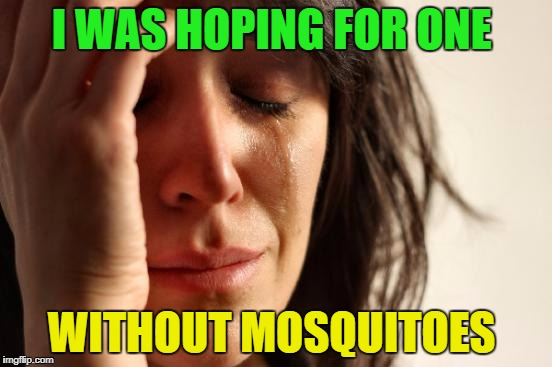 First World Problems Meme | I WAS HOPING FOR ONE WITHOUT MOSQUITOES | image tagged in memes,first world problems | made w/ Imgflip meme maker