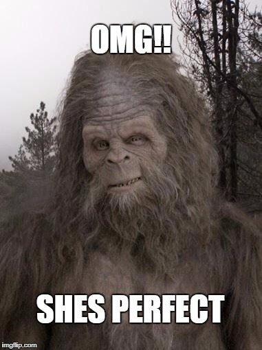 Sasquatch | OMG!! SHES PERFECT | image tagged in sasquatch | made w/ Imgflip meme maker