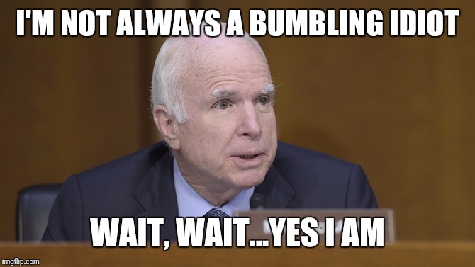 Bumbling Idiot | I'M NOT ALWAYS A BUMBLING IDIOT WAIT, WAIT...YES I AM | image tagged in john mccain | made w/ Imgflip meme maker