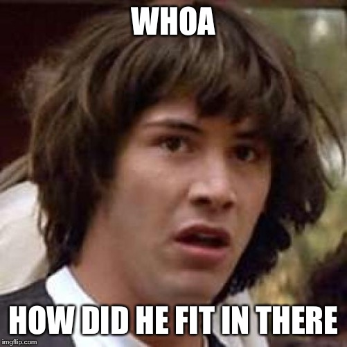 Conspiracy Keanu Meme | WHOA HOW DID HE FIT IN THERE | image tagged in memes,conspiracy keanu | made w/ Imgflip meme maker