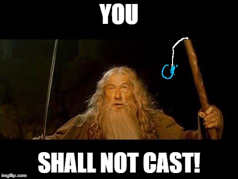 Gandalf Goes Fishing |  YOU; SHALL NOT CAST! | image tagged in you shall not pass | made w/ Imgflip meme maker