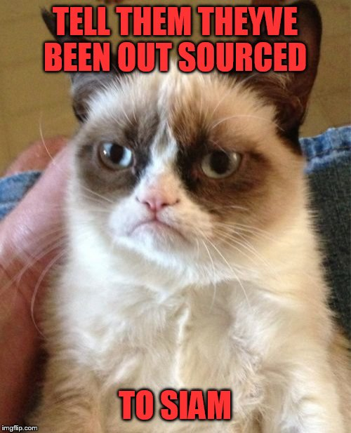 Grumpy Cat Meme | TELL THEM THEYVE BEEN OUT SOURCED TO SIAM | image tagged in memes,grumpy cat | made w/ Imgflip meme maker