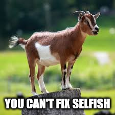 Scapegoat |  YOU CAN'T FIX SELFISH | image tagged in scapegoat | made w/ Imgflip meme maker