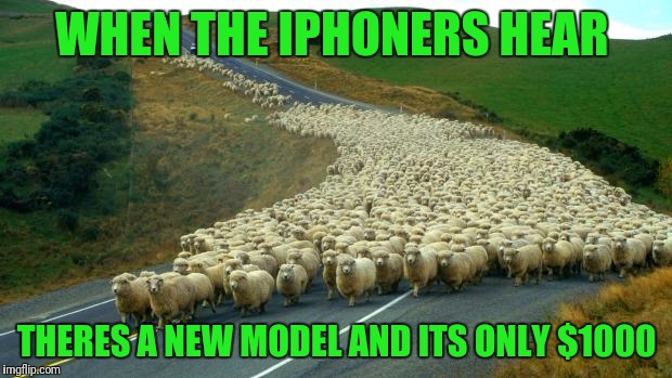 sheep | WHEN THE IPHONERS HEAR THERES A NEW MODEL AND ITS ONLY $1000 | image tagged in sheep | made w/ Imgflip meme maker
