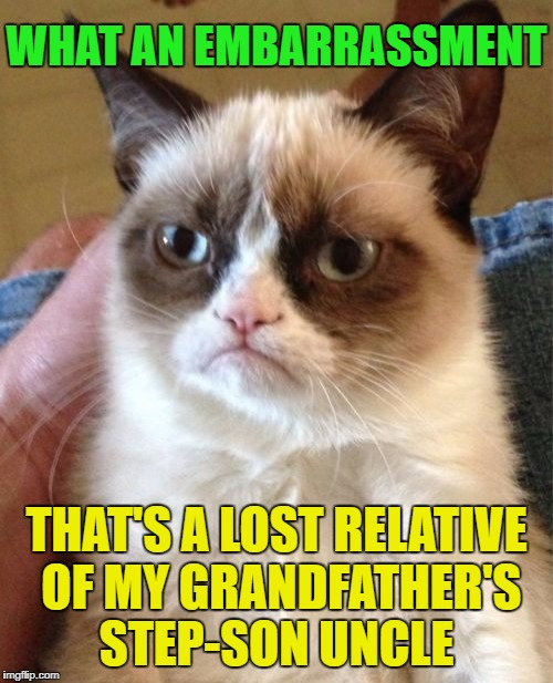 Grumpy Cat Meme | WHAT AN EMBARRASSMENT THAT'S A LOST RELATIVE OF MY GRANDFATHER'S STEP-SON UNCLE | image tagged in memes,grumpy cat | made w/ Imgflip meme maker
